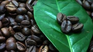 coffeeleave